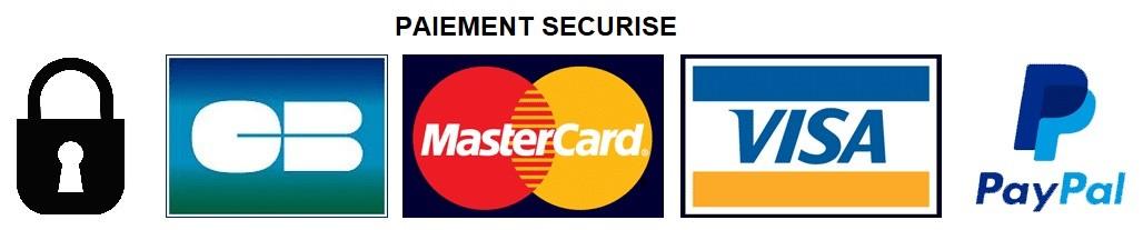 logo avec les moyens de paiement securises
